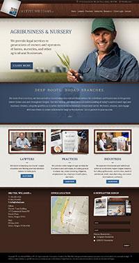 designpoint-websites-heltzel-williams-pc